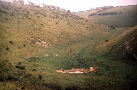 2005pic_02